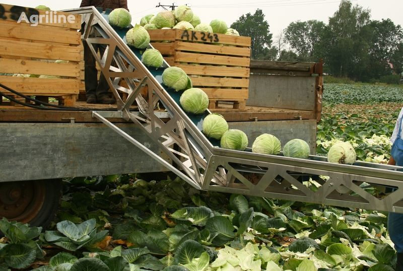 нов комбайн за картофи GRIMME Транспортер для уборки капусты