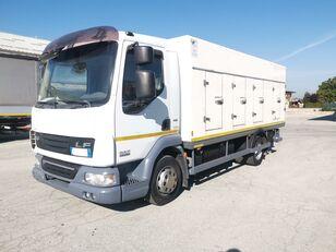 хладилен камион DAF 45.220 SURGELATI ATP 10/2024 - 120QLI