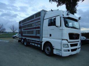 камион за превоз на животни MAN TGX 26 480