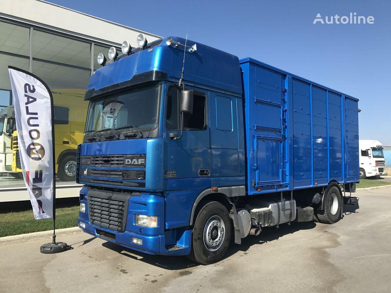 камион за превоз на животни DAF 95XF.480