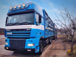 камион за превоз на животни PEZZAIOLI + ремарке за превоз на животни