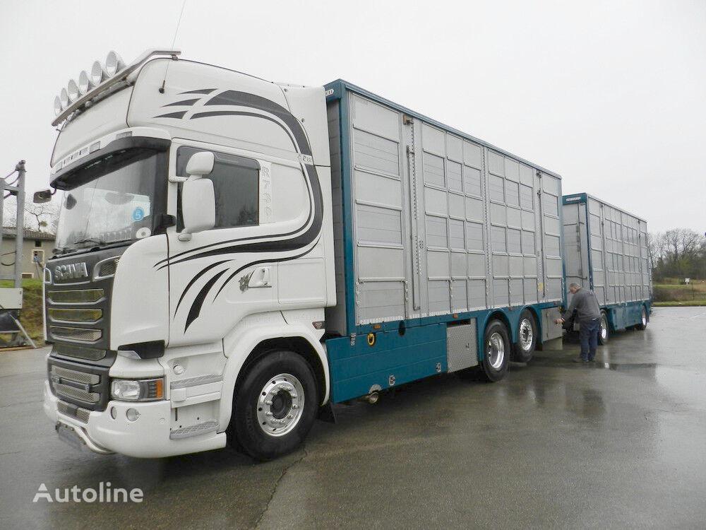 камион за превоз на животни SCANIA R 730 V8 For cattle transport + ремарке за превоз на животни